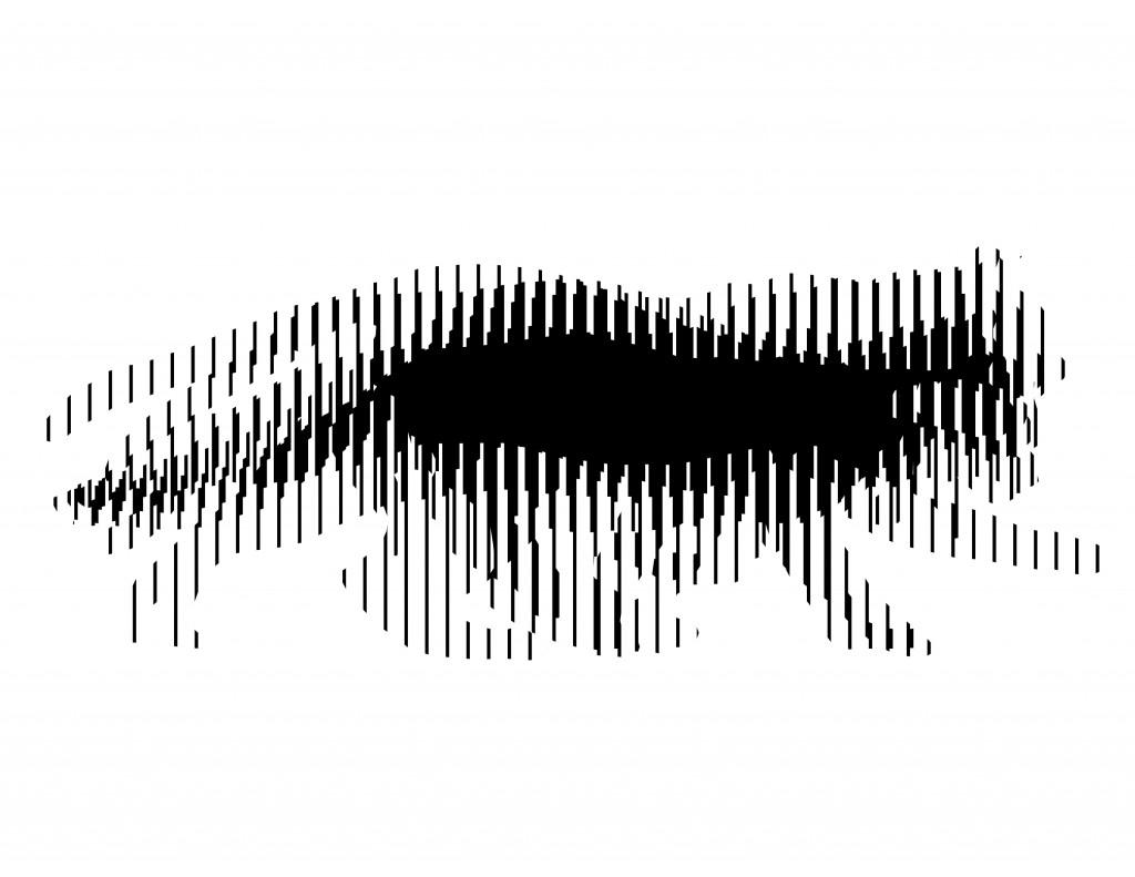 ilusão ótica