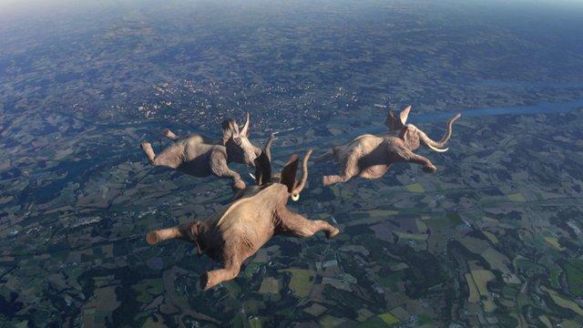 Elefantes voadores
